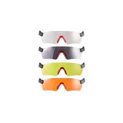 Occhiali protettivi PROTOS Integral glasses